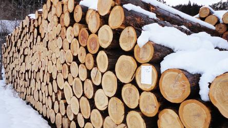 木材共販センター